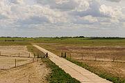 Pad door zomerpolders. Locatie, Noarderleech provincie Friesland 02.jpg