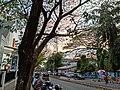 Pandeshwar Road in Mangalore - 2.jpg