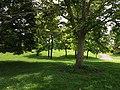 Parc des Hauteurs - Côté cimetière de Loyasse.jpg