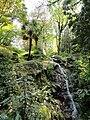 Parco della Villa Pallavicino - Stresa - DSC03030.JPG