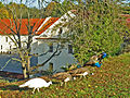 Pardubitz-Schloss10.jpg