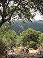 Park Goren, Israel 23.jpg