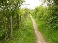 Path to Bunny from the Old Wood - geograph.org.uk - 1335546.jpg