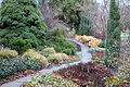 Pathway - Botanischer Garten, Dresden, Germany - DSC08647.JPG
