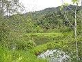 Paucartambo Province, Peru - panoramio (11).jpg