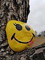 People like to paint rocks in Winnipeg. This was at Little Mountain Dog Park. (45040931494).jpg
