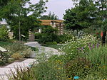 Perennial Yard to Traditional Yard - July 19, 2005.jpg