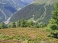 Pezzo e Pirli dal sentiero n° 2 tra i rododendri - panoramio.jpg