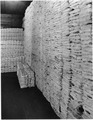 Photograph of sacks of coins - NARA - 296610.tif