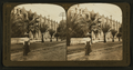 Picturesque walls of the historic San Gabriel Misson, California, U.S.A, by H.C. White Co..png