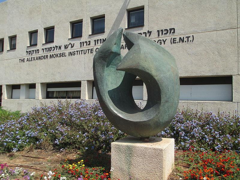 פסל בבית החולים תל השומר
