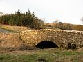 Pinfold Bridge - geograph.org.uk - 711972.jpg