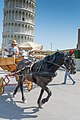 Pisa - 2016 July - panoramio (4).jpg
