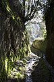 Pitigliano-Sorano Via cava di S.Giuseppe - panoramio.jpg