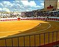 Plaza de toros de la Barcarrota.jpg