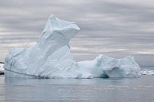 Pleneau Island Icebergs 3 (46613778954).jpg