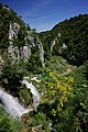 Plitvice lakes seen in June.jpg