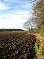 Ploughed field in January sunshine - geograph.org.uk - 653397.jpg