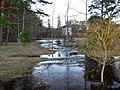 Pludi 2011 - panoramio (24).jpg