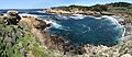 Point Lobos 17.jpg