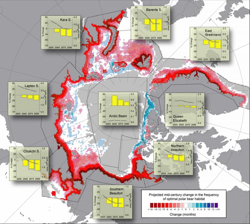 Polar Bear Habitat.png