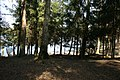 Pole namiotowe, jezioro Głęboczek - panoramio (16).jpg