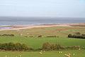 Porlock, fields by the coast at West Porlock - geograph.org.uk - 75792.jpg