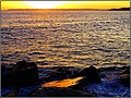 Praia da Rocha- Portimao (Portugal) (30723754237).jpg