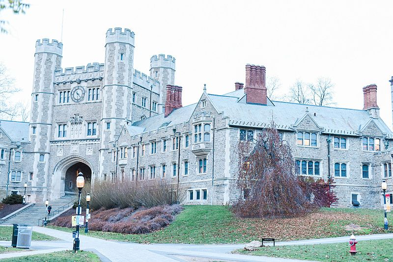 Princeton VIII.jpg