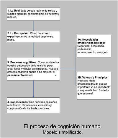 400px-Proceso_cognitivo.jpg