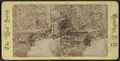 Prospect Park, from Robert N. Dennis collection of stereoscopic views 4.png