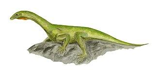 Protorosaurus - Life restoration
