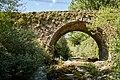 Puente de Villanueva de Pontedo sobre el río Torio. León (5).jpg