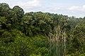 Pulau Ubin - panoramio (3).jpg