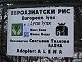 QRpedia-code-Sofia-Zoo-1.JPG