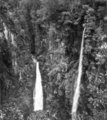 Queensland State Archives 447 Coomera Falls and Coomera Gorge Lamington National Park Beechmont November 1933.png