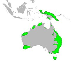 Quoll range map.jpg