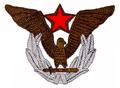 R49-yo0353-Amblem na kapi oficira i podoficira.png