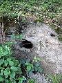 Rabbit hole - geograph.org.uk - 1284436.jpg