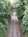 Railway Near North Vatson Farm - geograph.org.uk - 1413350.jpg