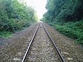 Railway line to Buxted - geograph.org.uk - 59152.jpg