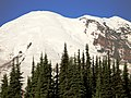 Rainier Vista 1 - panoramio.jpg