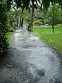 Rainy day in the Public Gardens (5087447464).jpg