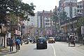 Raja Subodh Chandra Mullick Road - Garia - Kolkata 2014-02-12 2036.JPG