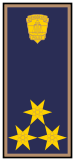 Rank Police Hungary CPT.svg