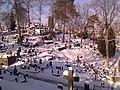 Rasų kapinės - panoramio.jpg