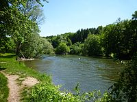Rechtenstein - Naturschutzgebiet Braunsel, Donau.jpg