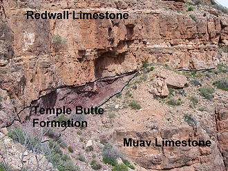 Muav Limestone - representative sequence of Redwall, Temple Butte, and Muav Limestone, in Grand Canyon