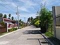 Renzo Village - panoramio (4).jpg