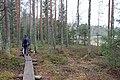 Retkeilijä Kaksvetisen rannan pitkospuilla, Liesjärven kansallispuisto, Tammela, 15.11.2014.JPG